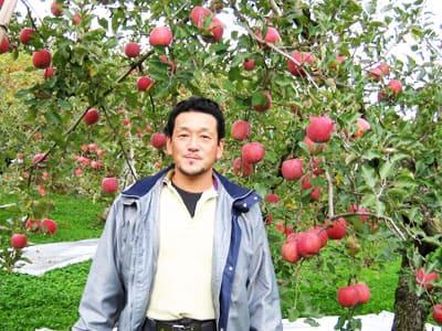朝日町の極旨ふじりんご